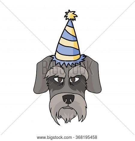 Cute Cartoon Schnauzer Dog Face With Party Hat Vector Clipart. Pedigree Kennel Doggie Breed. Purebre