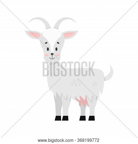 Cute Goat Vector Icon Isolated On White Background. Farm Animal Happy Female Goat With Udder Cartoon