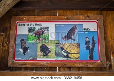 Bear Butte Sp, Sd, Usa - May 29, 2019: Birds Of The Butte Signage Post
