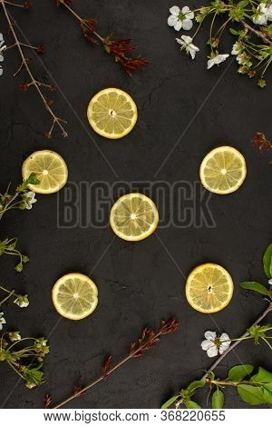 A Top View Sliced Lemons Sour Mellow Juicy Around White Flowers On The Dark Desk