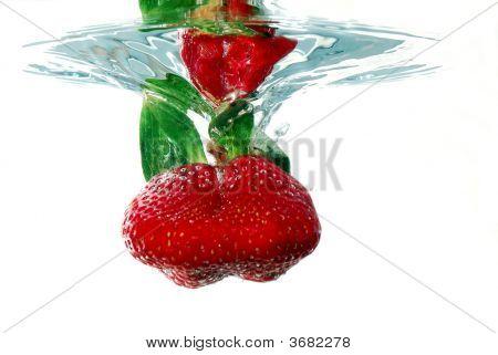 Floating Strawberry