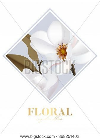 Magnolia White Isolated Flower In Rectangle Frame With Gold Text Letters Save The Date Vector Card.