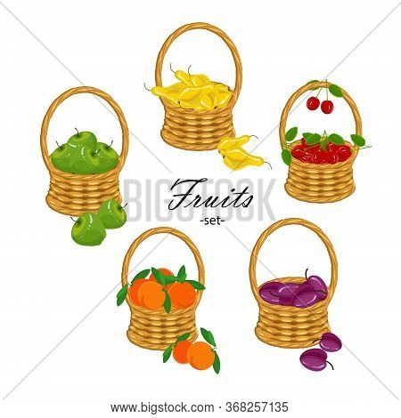 Fruits Set. Apple, Orange, Pear, Cherry, Plume In Wicker Basket Art Design Stock Vector Illustration