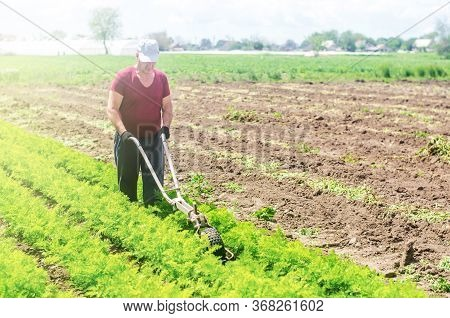 Farmer Cultivates A Carrot Plantation. Cultivating Soil. Loosening Earth To Improve Access Water And
