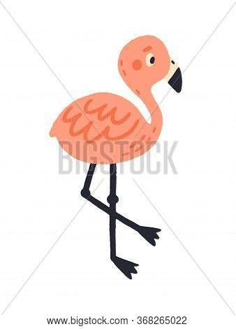 Cute Pink Hand Drawn Flamingo Vector Flat Illustration. Adorable Exotic Colorful Bird Stand Isolated
