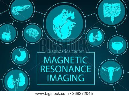 Mri Of Organs And Joints Medicine. Vector Magnetic Resonance Imaging Medical Diagnostics. Healthcare