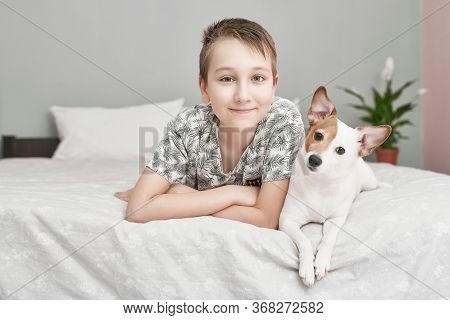Two Friends Boy And Dog Jack Russell Terrier Lying Together On Bed . Friendship Concept.cute Little