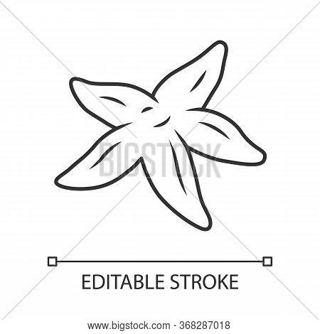Starfish Linear Icon. Tropical Underwater Creature. Invertebrate Mollusk. Star Shaped Aquarium Organ