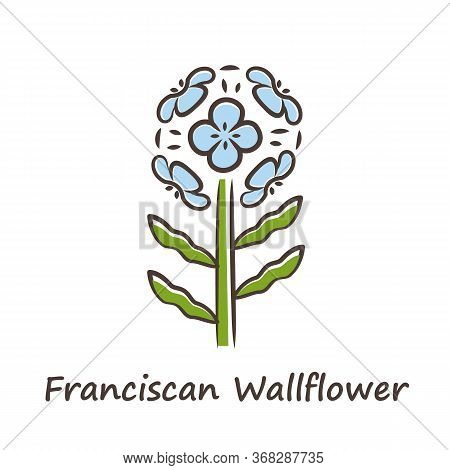 Franciscan Wallflower Blue Color Icon. Garden Flowering Plant With Name Inscription. Erysimum Franci
