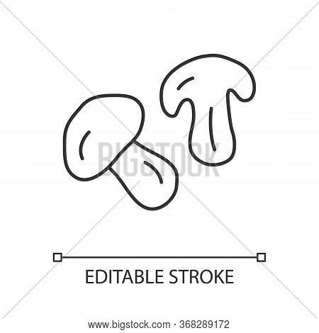 Edible Mushroom Linear Icon. Cut Champignon, Shiitake Slice Thin Line Illustration. Healthy Nutritio