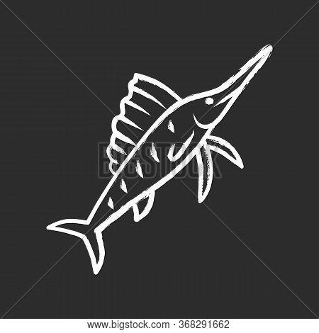 Sailfish Chalk Icon. Swimming Fish With Sharp Long Nose. Undersea Swordfish Animal. Fishing. Aquatic