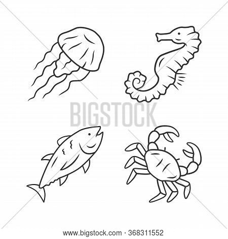 Sea Animals Linear Icons Set. Swimming Tuna, Crab, Jellyfish. Seafood Restaurant. Marine Fauna. Unde