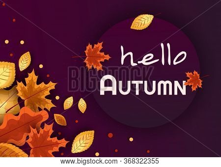 Autumn composition. Concept Hello fall. Creative Top view Flat lay. Autumn composition. Concept Hello fall. Creative Top view Flat lay. Autumn Background with falling leaves, Web Autumn Banner, shopping sale or seasonal poster, Autumn \\n Postcard and Inv