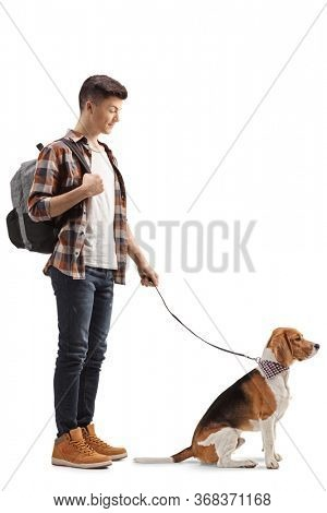 Full length shot of a male student standing with a beagle dog on a lead isolated on white background
