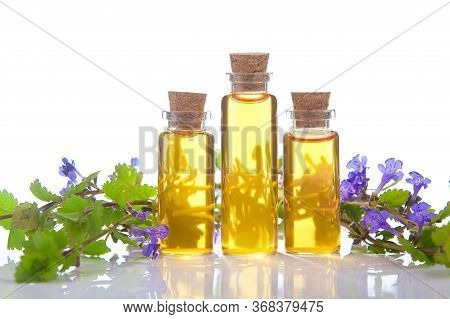Bugleherb Essential Oil In A Beautiful Bottle On The White Background