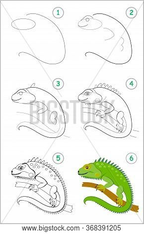How To Draw Step By Step Cute Green Iguana. Educational Page For Kids. Back To School. Developing Ch
