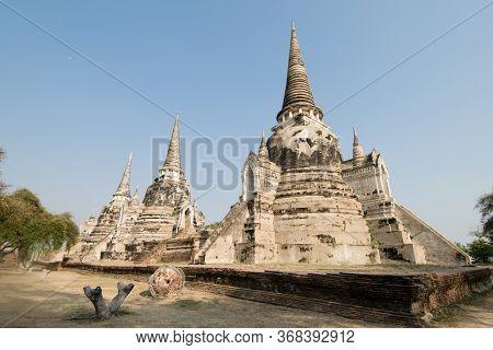 Panorama Of Ayutthaya Historical Park With Three Stone Stupas And A Tree In Ayuthaya, Thailand.