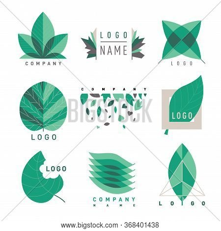 Tree Leaf Logo Design, Eco-friendly Concept. Nature Elements. Nature Logo. Set Of Eco Green Badge. L