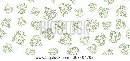 Currant Green Leaves Seamless Background On White Background. Vector Illustration.