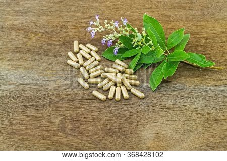 Close Up Fresh Flower Vitex Trifolia Linn Or Indian Privet With Green Leaf  Is Herb In Thailand And