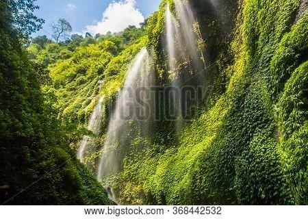Beautiful View Of Madakaripura Waterfalls The Tallest Waterfalls In Java Island And Second Tallest W