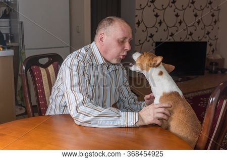 Basenji Dog Having Hard Conversation With Master Sitting At The Table. The Bad-mannered Dog Shows It