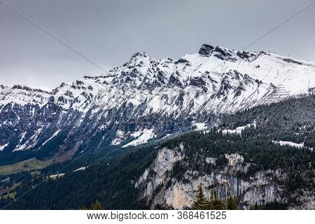 Snow Capped Mountains Range During Winter In Switzerland, Pine Trees Forest On Hill Covered By Snow.