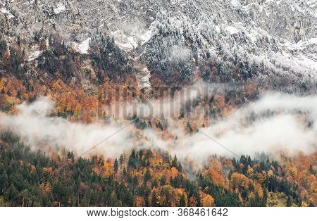 Snow-capped Mountain With Colorful Of Tree Of Interlaken, Switzerland. Early Winter Of November 2019