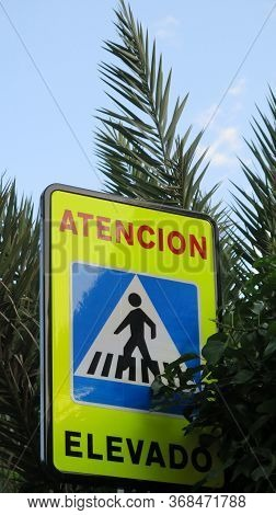 Elevated Pedestrian Crossing Warning Sign Partly Covered By Palm Leaves