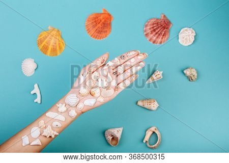 Closeup Of Hand Holding Different Kinds Of Seashells, Corals Ans Surrounded By Conches In Front Of A