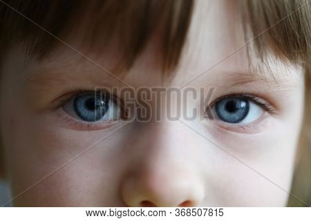 Close-up Of Little Girl Eyes. Beautiful Blue Eyes Of Child. Macro Shot Of Kid Face. Windows Of Soul.
