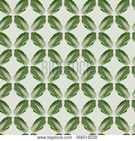 Vector Seamless Pattern With Chinese Napa Cabbage, Vector Illustration. Peking Cabbage Healthy Organ