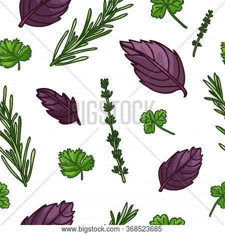 Seamless Design Seasoning Pattern. Backdrop With Fresh Herb. Background With Rosemary, Basil Leaf, P