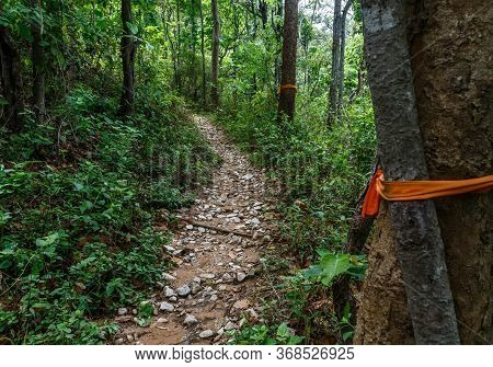 Hiking Up The Pathway Of The Monks To Doi Suthep - Chiang Mai / Thailand