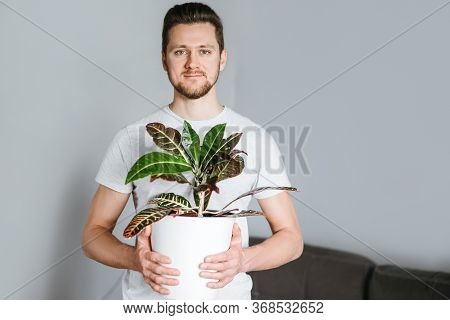 Man Holding A White Flowerpot With Croton Plant In His Hands On Bright Background.