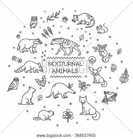 Vector. Set Of Linear Vector Nocturnal Animals