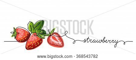 Strawberry Vector Color Illustration, Background, Banner For Label Design. One Continuous Line Drawi