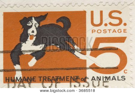 This is a Vintage 1964 Stamp Humane Treatment of Animals poster