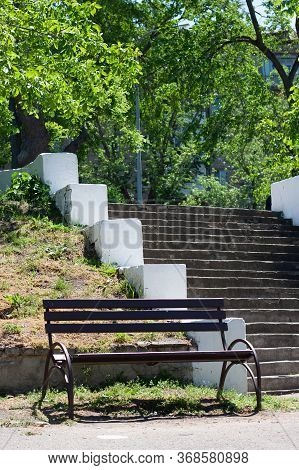 Wooden Bench And Steps Surrounded By Trees In Park. Concept Of Rest,  Calm And Silence