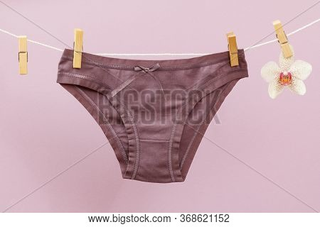 New Brown Women Panties On Clothesline With Clothespins And Orchid Flower In Lilac Background. Woman