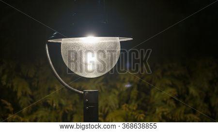 The Backdrop Is Bush That Little Light. Magic Street Lamp Close-up With Copyspace. Warm Lantern Ligh