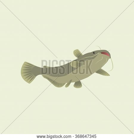 Vector Illustration Of Catfish, Made Simple In Gray