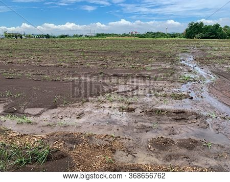 Land For Cultivation And Ready For Sow At The Countryside By Farmer.