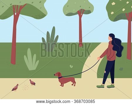 Cute Girl Walking With Dog Dachshund Watching Pigeons Pecking At Crumbs In Spring City Park Or Fores