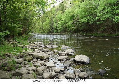 Huntington Creek, In Fishing Creek Township, In Orangeville, Pennsylvania