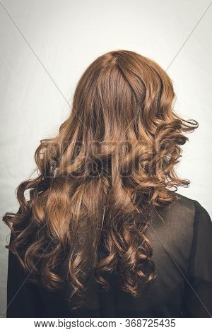 Hairstyle Rear View. Beautiful Hairstyle Of Woman. High Fashion Coiffure.