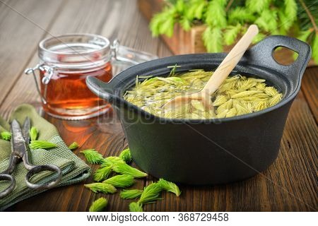 Cooked Spruce Tips In A Black Pan, Jar Of  Honey Or Syrup From Fir Buds And Needles, Twigs Of Fir Tr