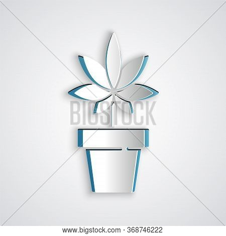 Paper Cut Medical Marijuana Or Cannabis Plant In Pot Icon Isolated On Grey Background. Marijuana Gro