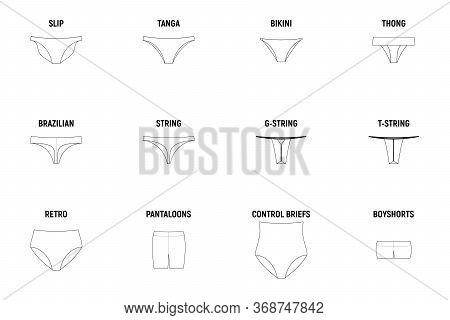 Types Of Panties For Women. Underwear Set Vector Technical Design Illustration.