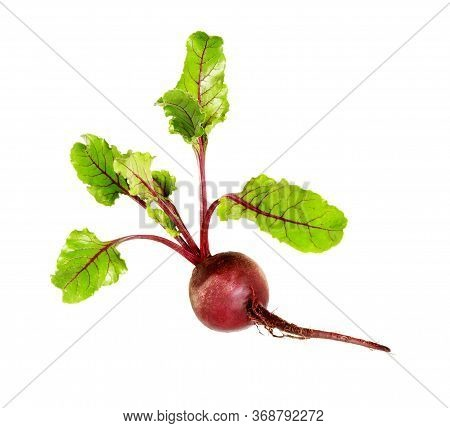 Beet. Beetroot With Leaves, Fresh Whole Beet Isolated On White Background. Raw Red Beetroot.